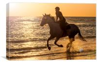 Galloping at Sunset, Canvas Print