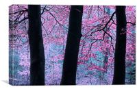 Forest Fantasy, Canvas Print