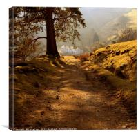 contre jour at Seatoller, Canvas Print