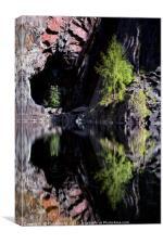 Hodge Close Quarry, Canvas Print