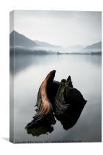 Misty Ullswater Stump, Canvas Print