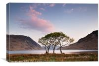 Crummock Water Trees Sunrise, Canvas Print