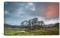 River Brathay Copse Sunrise, Canvas Print