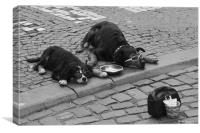 Little Beggars, Brussels, Canvas Print