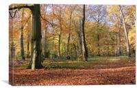 Autumn Spectacle, Canvas Print