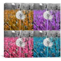 Ripe dandelion flower framed photo , Canvas Print