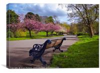 Watching the Blossom Trees, Canvas Print