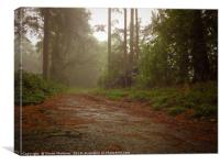 The Path to Autumn, Canvas Print