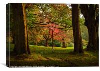 An Autumn Oasis, Canvas Print