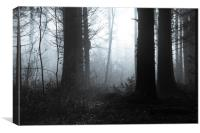 Edge of the forest, Canvas Print