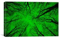 """Root or Branch – """"Green Positive Image"""" , Canvas Print"""