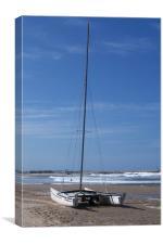 Catamaran, Canvas Print