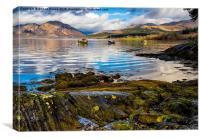 Scottish Loch Creran, Canvas Print