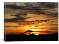 African Sunset, Canvas Print