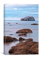 The Bass Rock, Canvas Print