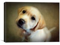 Puppy Love, Canvas Print