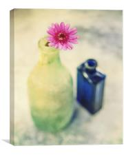 Flower and Old Bottles, Canvas Print