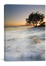 Enveloped by the Sea , Canvas Print