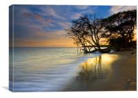 Reflections of Paradise, Canvas Print
