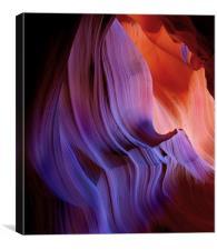 Desert Light , Canvas Print