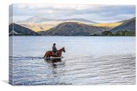 Horse at Airds Bay Loch Etive, Canvas Print