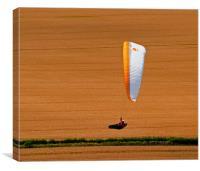 Wheat Field Paraglider, Canvas Print