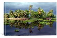 Palm Trees in a Storm Kerala, Canvas Print