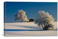 Winterland, Canvas Print