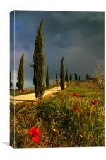 Toscana thunderstorm, Canvas Print
