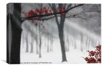 ALONE IN THE FOREST, Canvas Print