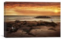SEAGULLS AT THE BEACH, Canvas Print
