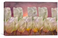 TULIP ABSTRACT, Canvas Print
