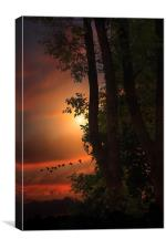 LATE AUGUST SUNSET, Canvas Print