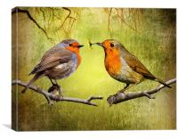 Robin Gifts, Canvas Print