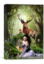 Woodland Wonders, Canvas Print