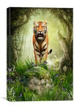 Tiger Woods, Canvas Print