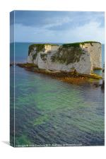 Old Harry's Rocks, Canvas Print