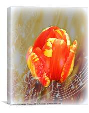 Flower Music, Canvas Print