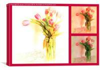 Tulip Tryptich, Canvas Print