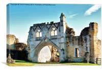 Kirkham Priory Ruins, Canvas Print