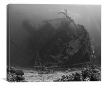 Ghiannis.D Wreck & Divers,Egypt., Canvas Print