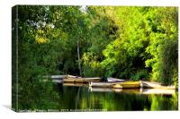 Rowing Boats, Colwick Park, Canvas Print
