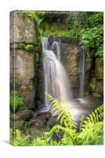 The magic that is Lumsdale, Canvas Print