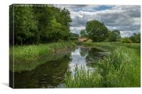 Clayworth on the Chesterfield canal, Canvas Print