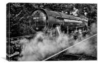 Austerity Class Engine in Mono, Canvas Print