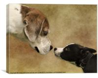 Nose To Nose Dogs, Canvas Print