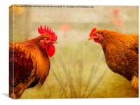 Hen Party, Do You Come Here Often?, Canvas Print