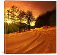 Winter World, Canvas Print