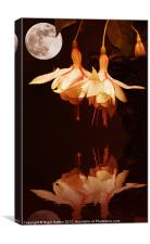 The Flower and the Moon, Canvas Print
