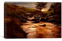Ladybower Brook, Canvas Print
